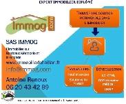 D-09-IMMOG